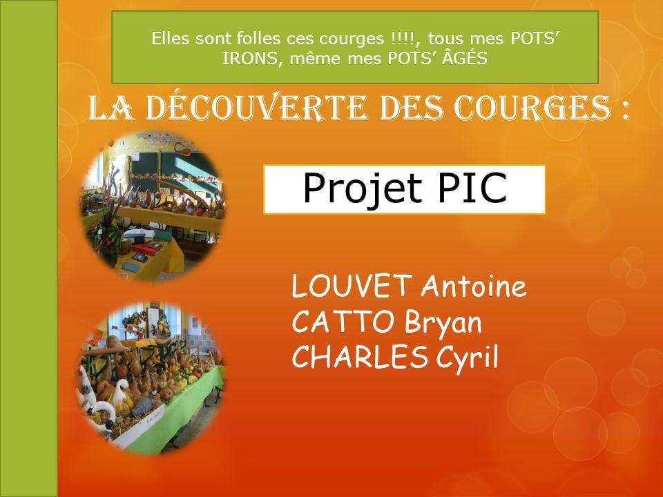 Projet PIC LOUVET Antoine CATTO Bryan CHARLES Cyril La Découverte des Courges : Elles sont folles ces courges !!!!, tous mes POTS IRONS, même mes POTS
