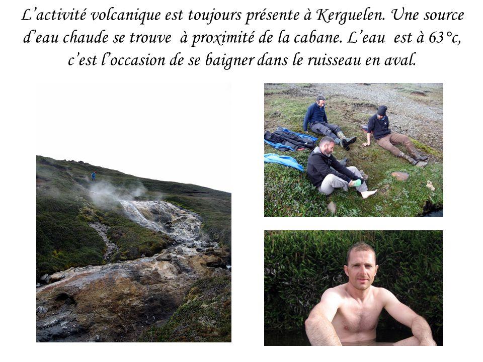Lactivité volcanique est toujours présente à Kerguelen. Une source deau chaude se trouve à proximité de la cabane. Leau est à 63°c, cest loccasion de