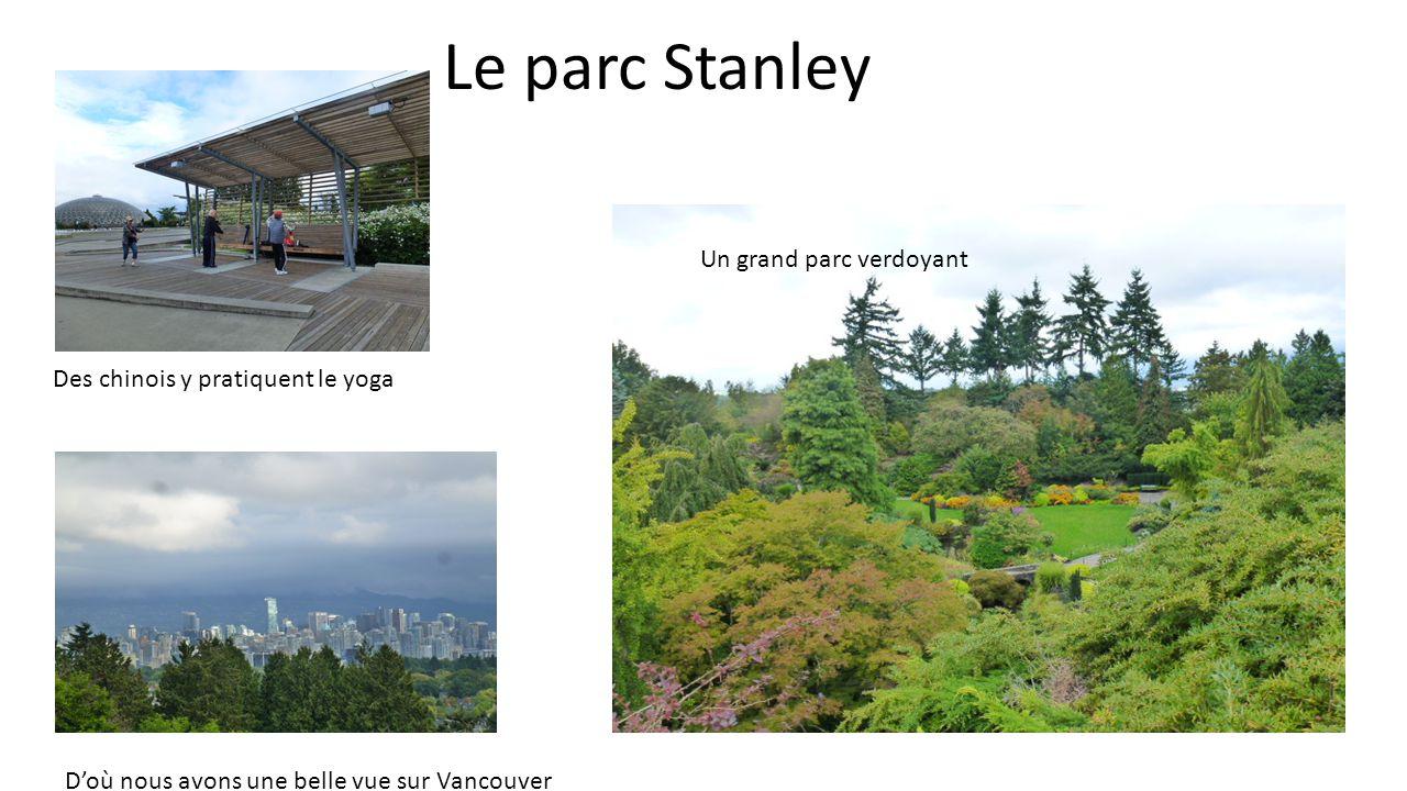 Le parc Stanley Des chinois y pratiquent le yoga Un grand parc verdoyant Doù nous avons une belle vue sur Vancouver