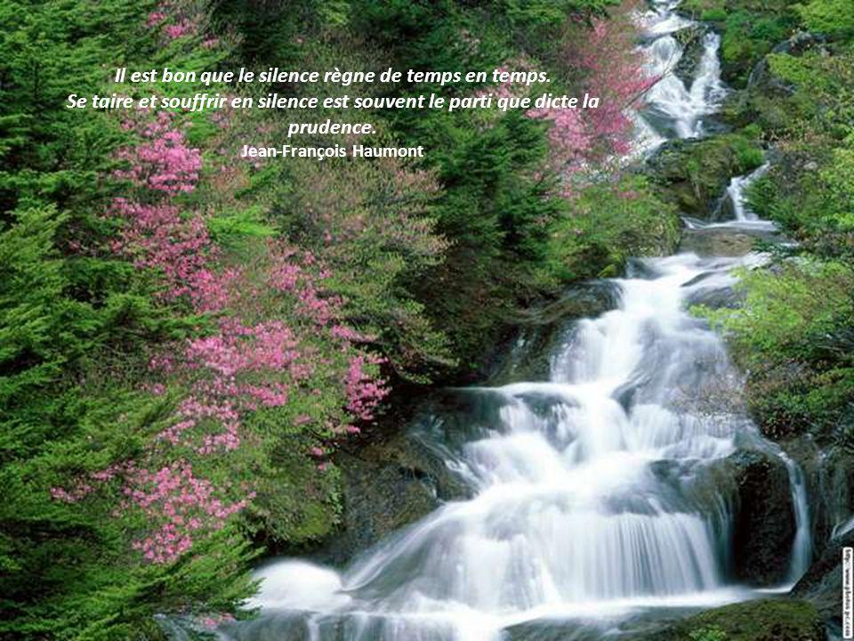 Si ce que tu as à dire nest pas plus beau que le silence alors tais-toi. Michel Tournier