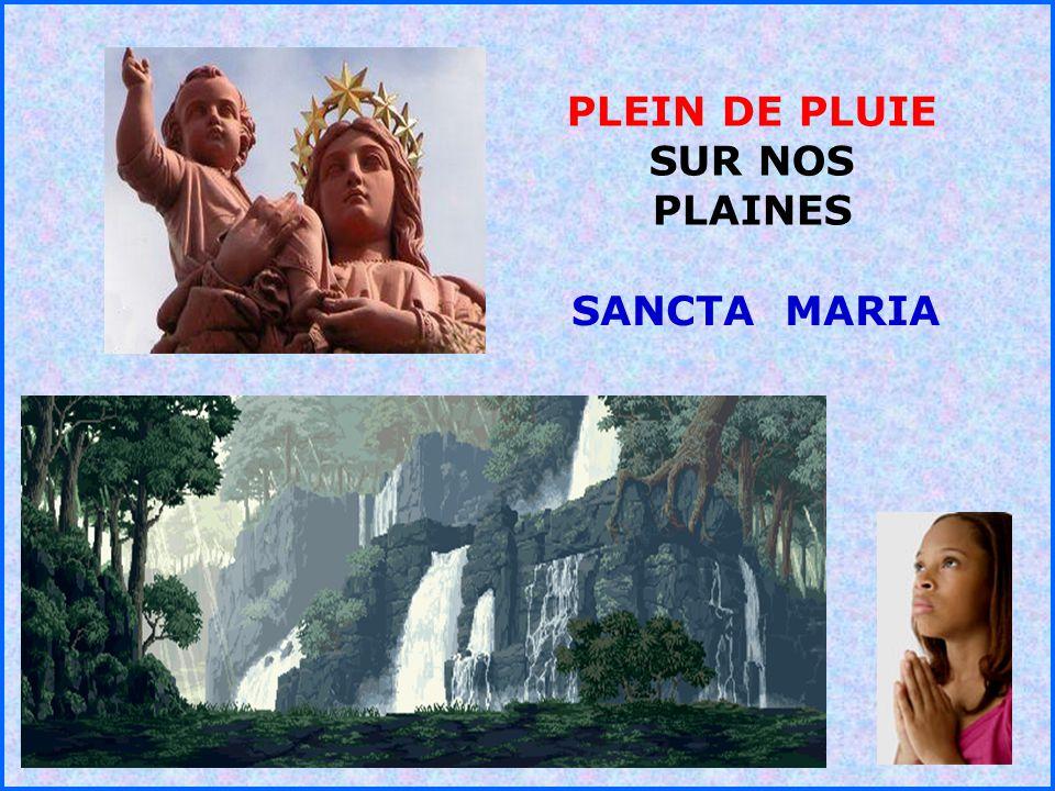 .. PLEIN DE PLUIE SUR NOS PLAINES SANCTA MARIA