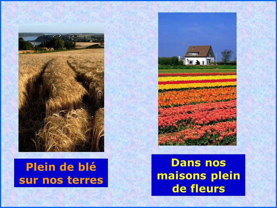 .. Plein de blé sur nos terres Dans nos maisons plein de fleurs