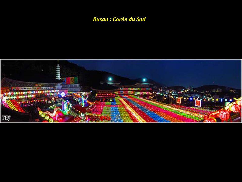 Lagune colorée : Bolivie