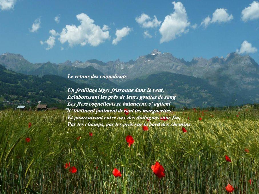 Merci, oh douce fleur de notre douce France Qui allume en nos cœurs nos souvenirs d enfance .