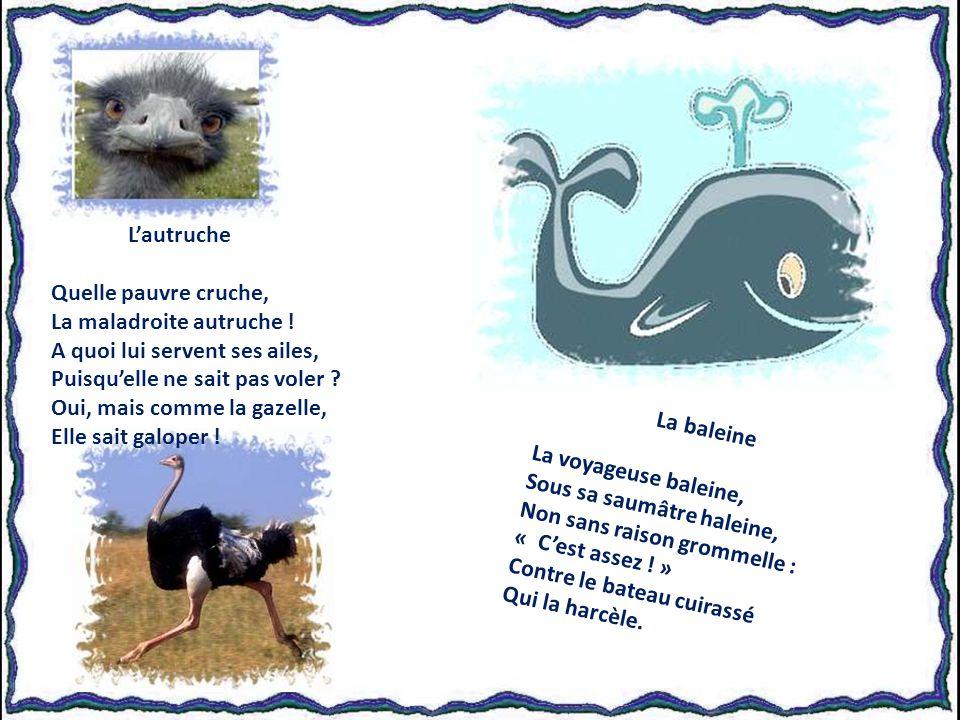 La baleine La voyageuse baleine, Sous sa saumâtre haleine, Non sans raison grommelle : « Cest assez .