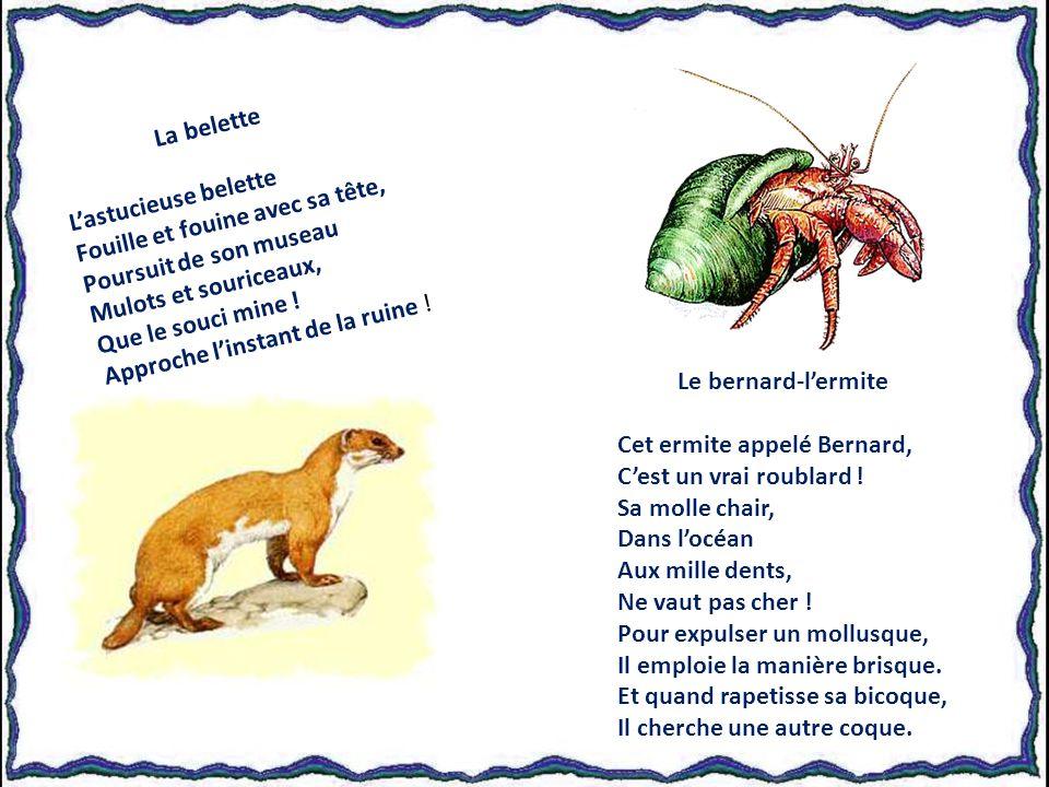 Textes de Yann le Puits, avec son aimable autorisation.