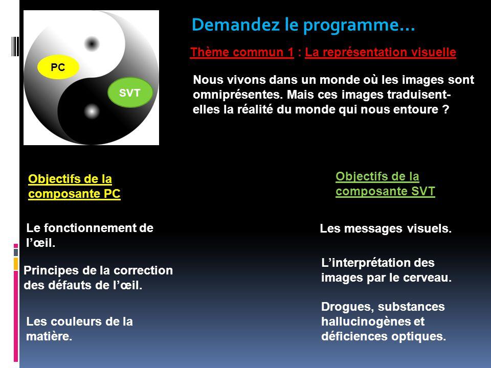 Demandez le programme… Thème commun 1 : La représentation visuelle Objectifs de la composante PC Les messages visuels.