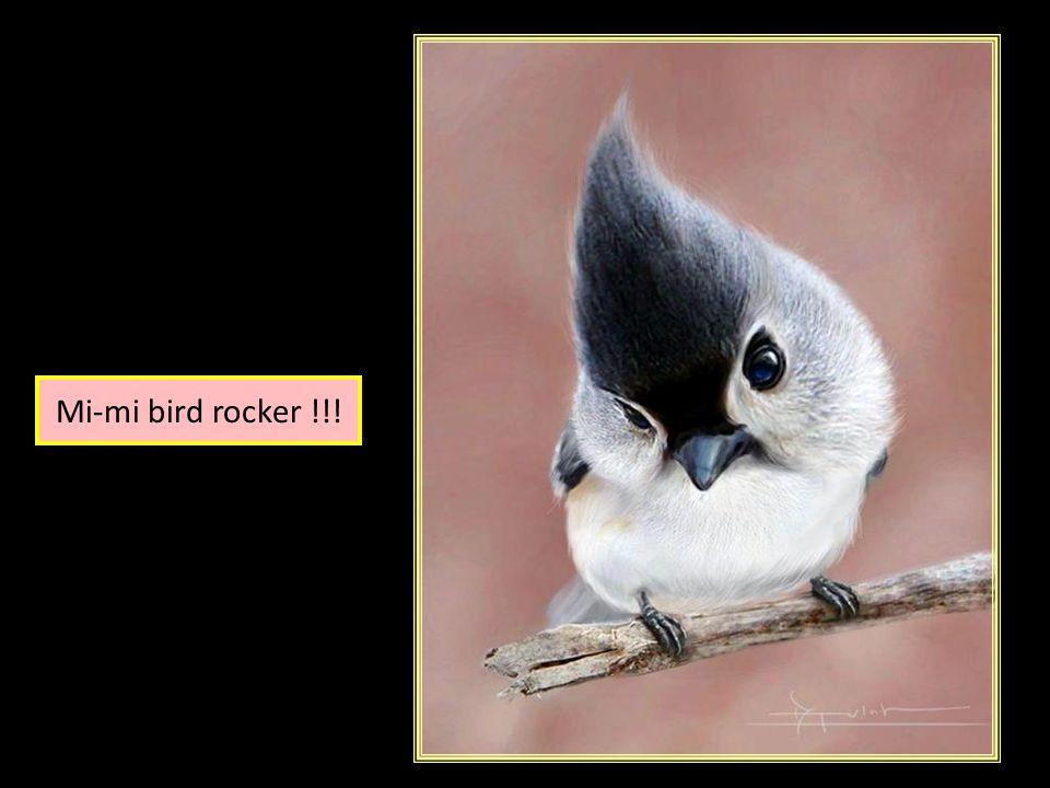 Source images : Internet Accompagnement musical : Le carnaval des animaux « Les oiseaux »