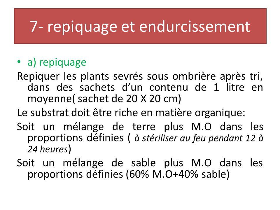 REACTIVATION DES PLANTS Bourgeons de 4 ème générationBourgeons 3 ème génération