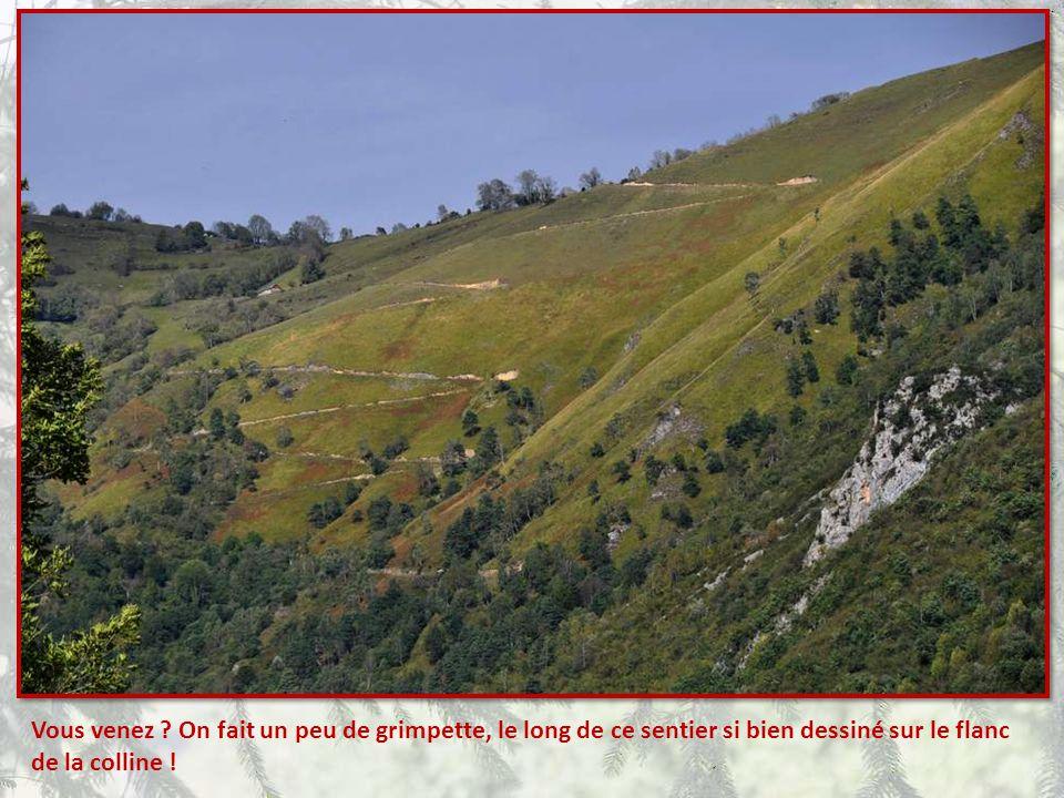 Quand je vous parle de décor gran- diose… Voyez la beauté, mais aussi la difficulté d'habiter là en pleine montagne…