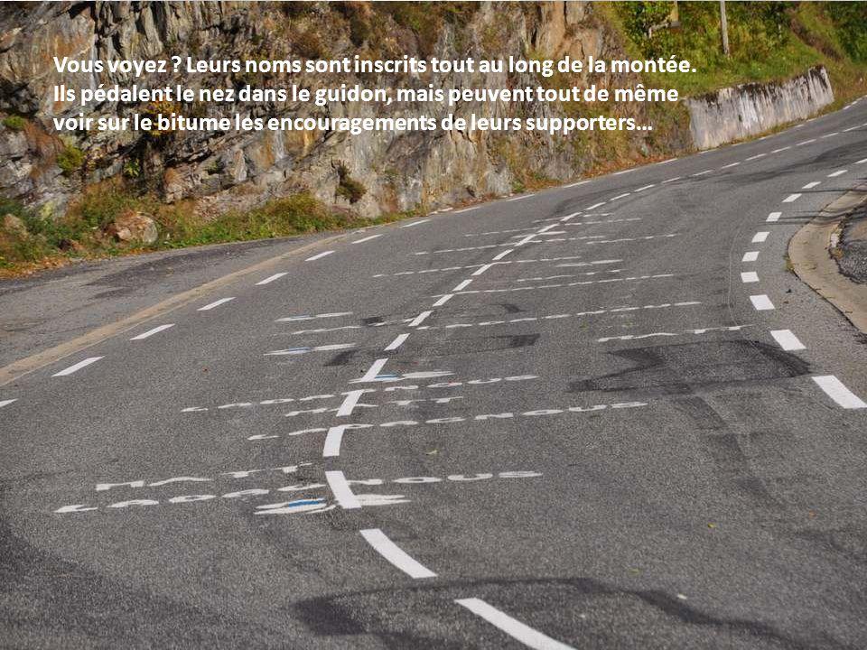 Et maintenant, comme les plus grands cyclistes mondiaux, à l'attaque de l'Aubisque !!!
