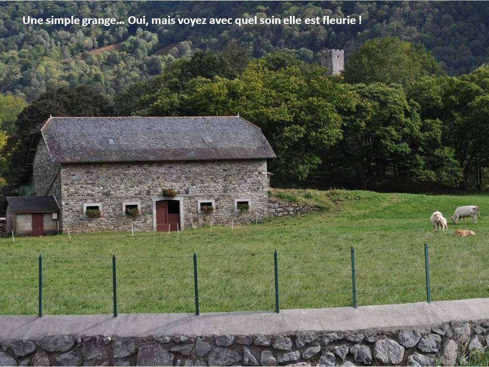 Le château fort de Castet Le seul château vicomtal de la vallée, constitué de retranche- ments en terre ultérieurement complétés, au XIIIe siècle, par