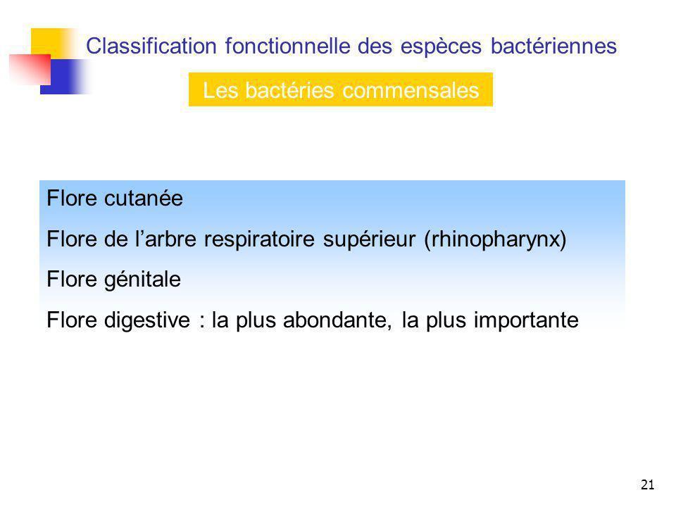 21 Les bactéries commensales Flore cutanée Flore de larbre respiratoire supérieur (rhinopharynx) Flore génitale Flore digestive : la plus abondante, l