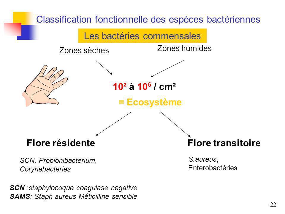 22 10² à 10 6 / cm² Zones sèches Zones humides = Ecosystème Flore résidenteFlore transitoire SCN, Propionibacterium, Corynebacteries Les bactéries com
