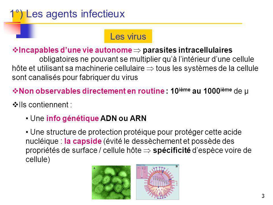 3 Les virus Incapables dune vie autonome parasites intracellulaires obligatoires ne pouvant se multiplier quà lintérieur dune cellule hôte et utilisan