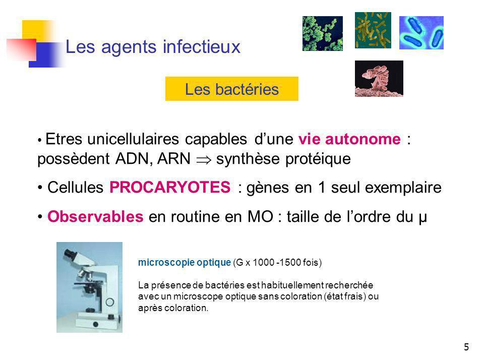 5 Les agents infectieux Les bactéries Etres unicellulaires capables dune vie autonome : possèdent ADN, ARN synthèse protéique Cellules PROCARYOTES : g