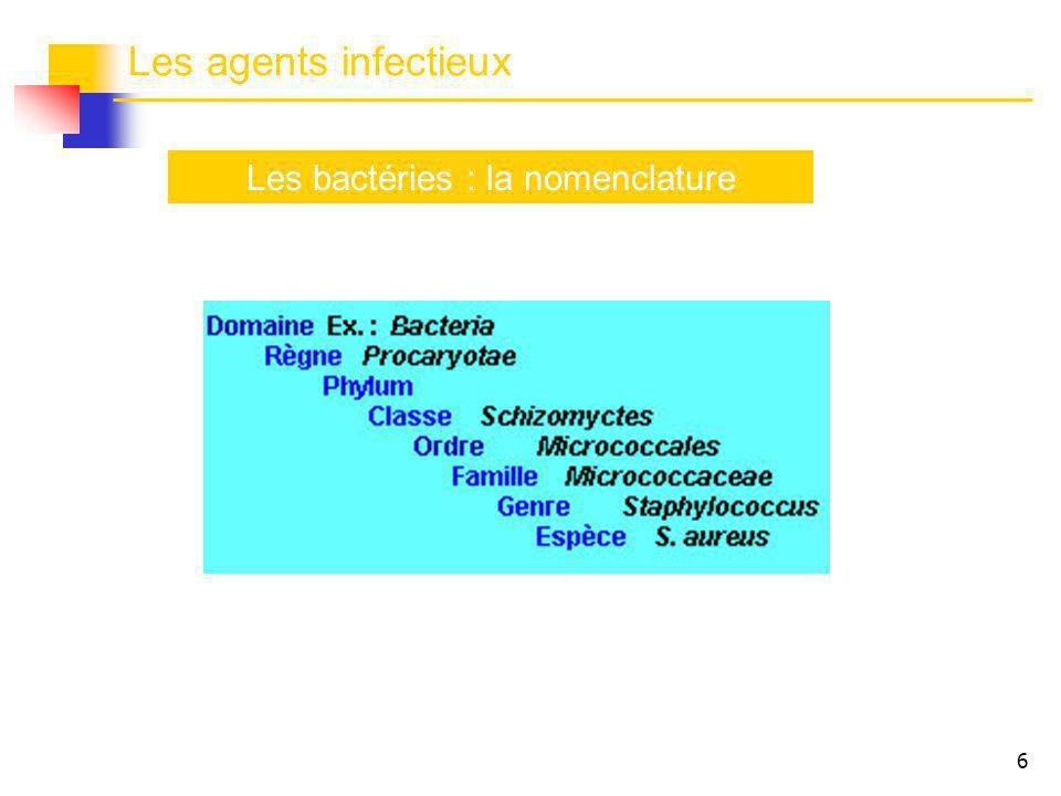 17 Classification fonctionnelle des espèces bactériennes Relations hôte / bactéries B.