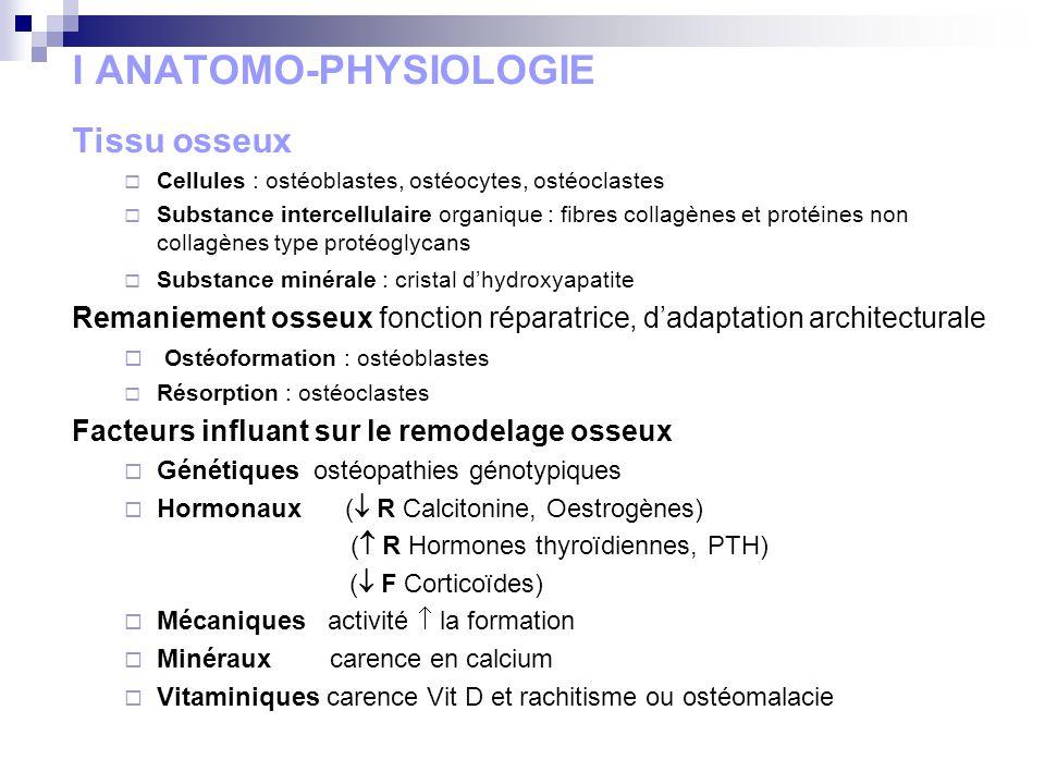 I ANATOMO-PHYSIOLOGIE Tissu osseux Cellules : ostéoblastes, ostéocytes, ostéoclastes Substance intercellulaire organique : fibres collagènes et protéi