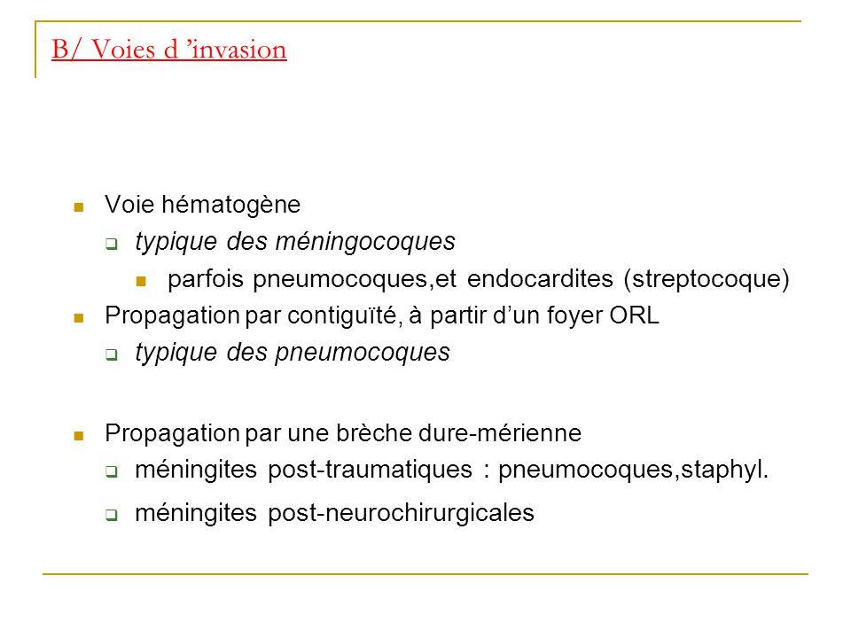 B/ Voies d invasion Voie hématogène typique des méningocoques parfois pneumocoques,et endocardites (streptocoque) Propagation par contiguïté, à partir