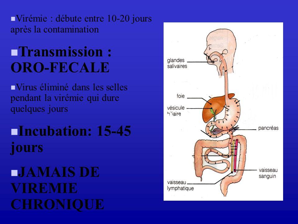 Virémie : débute entre 10-20 jours après la contamination Transmission : ORO-FECALE Virus éliminé dans les selles pendant la virémie qui dure quelques