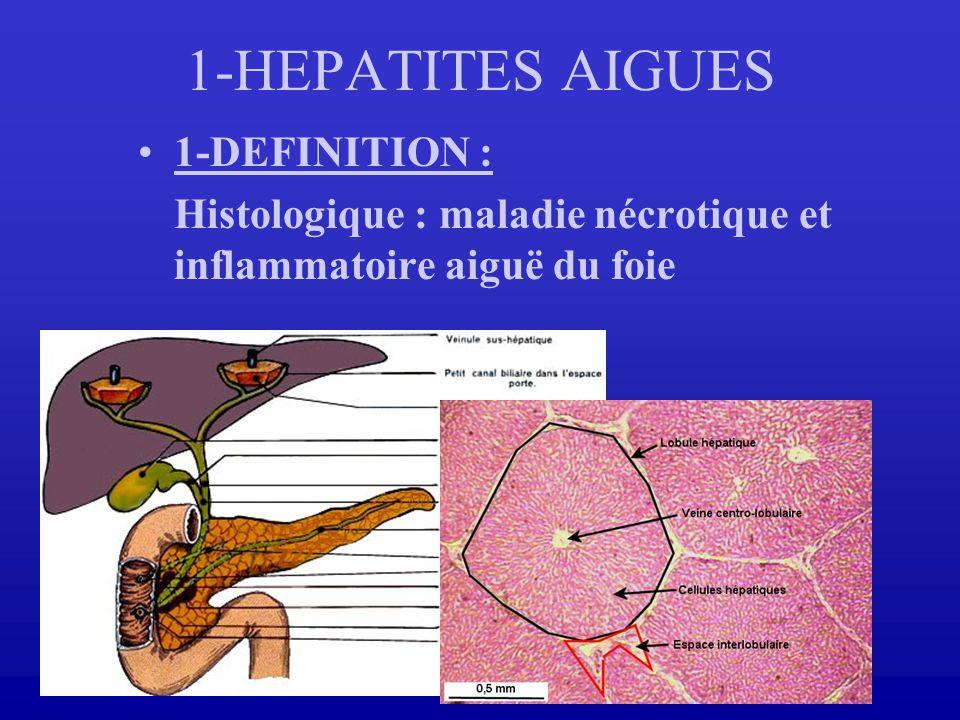 1-DEFINITION : Histologique : maladie nécrotique et inflammatoire aiguë du foie 1-HEPATITES AIGUES