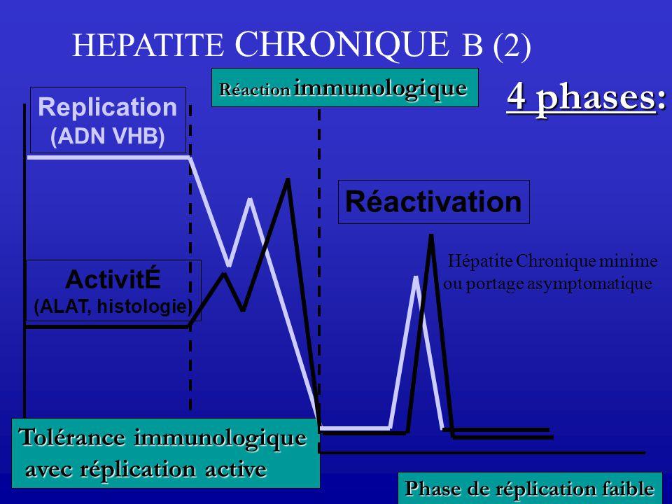 Replication (ADN VHB) ActivitÉ (ALAT, histologie) Tolérance immunologique avec réplication active avec réplication active Réaction immunologique Réact