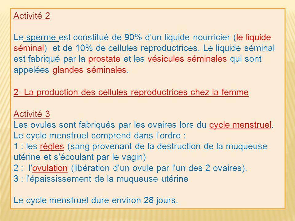 Activité 2 Le sperme est constitué de 90% dun liquide nourricier (le liquide séminal) et de 10% de cellules reproductrices. Le liquide séminal est fab