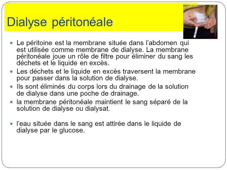 Dialyse péritonéale Le péritoine est la membrane située dans labdomen qui est utilisée comme membrane de dialyse. La membrane péritonéale joue un rôle