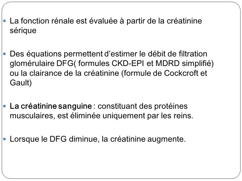 La fonction rénale est évaluée à partir de la créatinine sérique Des équations permettent destimer le débit de filtration glomérulaire DFG( formules C