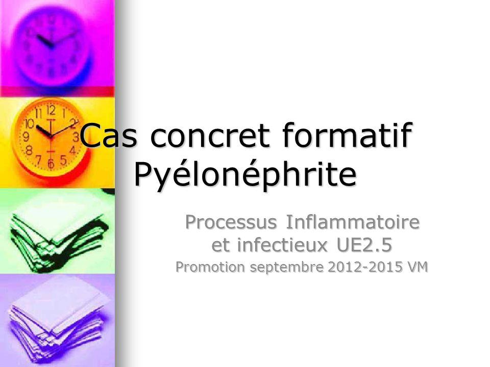 Cas concret formatif Pyélonéphrite Processus Inflammatoire et infectieux UE2.5 Promotion septembre 2012-2015 VM