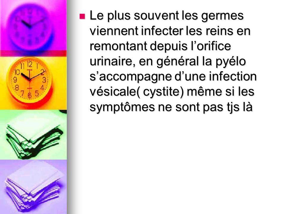 Le plus souvent les germes viennent infecter les reins en remontant depuis lorifice urinaire, en général la pyélo saccompagne dune infection vésicale(