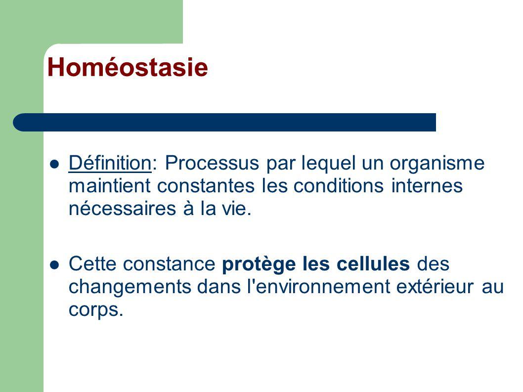 Homéostasie Définition: Processus par lequel un organisme maintient constantes les conditions internes nécessaires à la vie.