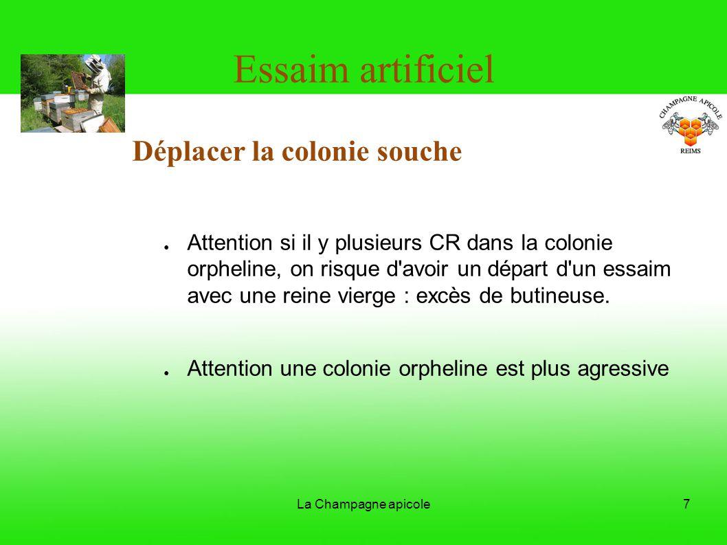 La Champagne apicole7 Essaim artificiel Déplacer la colonie souche Attention si il y plusieurs CR dans la colonie orpheline, on risque d'avoir un dépa