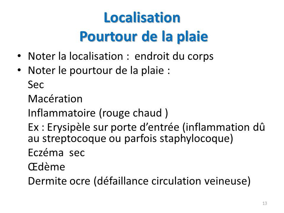 Localisation Pourtour de la plaie Noter la localisation : endroit du corps Noter le pourtour de la plaie : Sec Macération Inflammatoire (rouge chaud )
