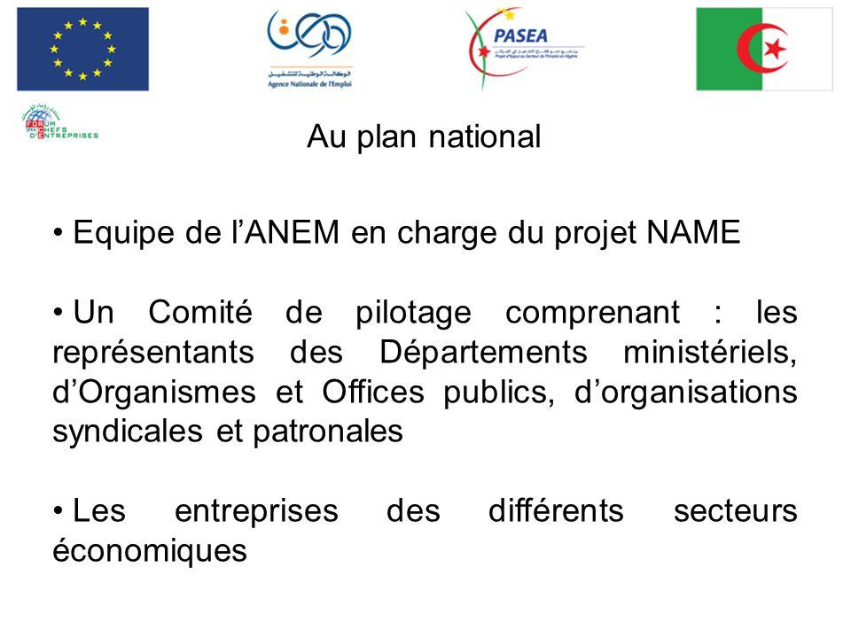 Au plan national Equipe de lANEM en charge du projet NAME Un Comité de pilotage comprenant : les représentants des Départements ministériels, dOrganis