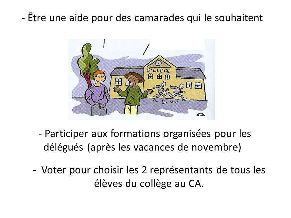 - Être une aide pour des camarades qui le souhaitent - Participer aux formations organisées pour les délégués (après les vacances de novembre) - Voter