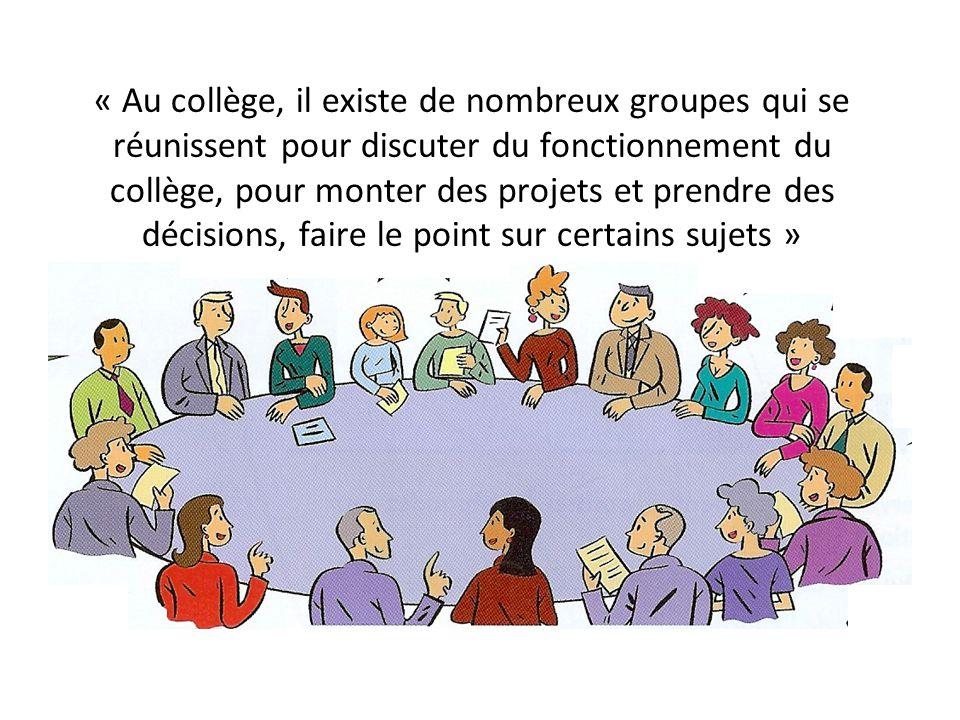 « Au collège, il existe de nombreux groupes qui se réunissent pour discuter du fonctionnement du collège, pour monter des projets et prendre des décis