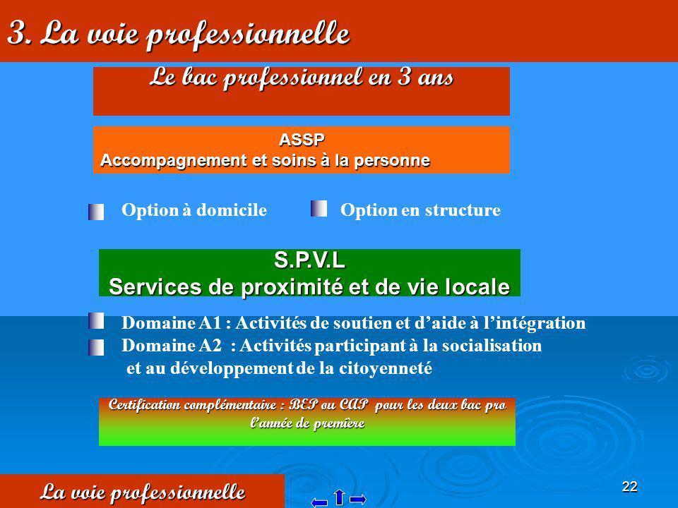 22 3. La voie professionnelle La voie professionnelle Le bac professionnel en 3 ans S.P.V.L Services de proximité et de vie locale Domaine A1 : Activi