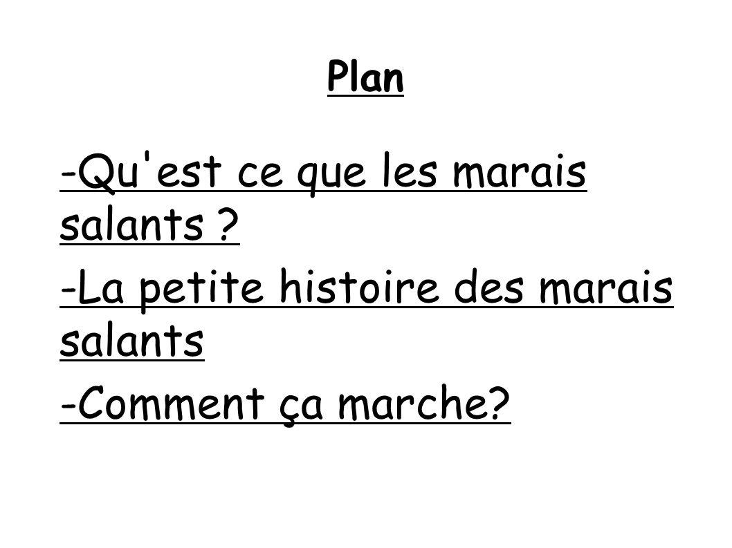 Plan -Qu est ce que les marais salants ? -La petite histoire des marais salants -Comment ça marche?