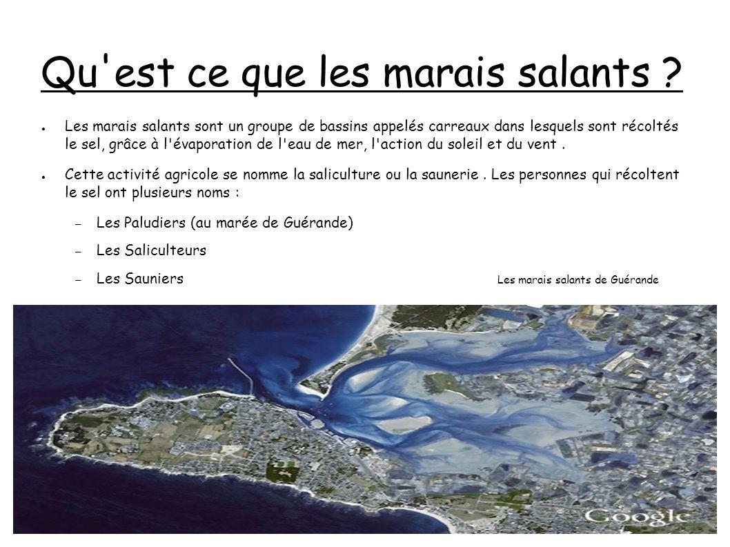 La petite histoire des marais salants Les premiers marais salants semblent avoir été créés par les romains.