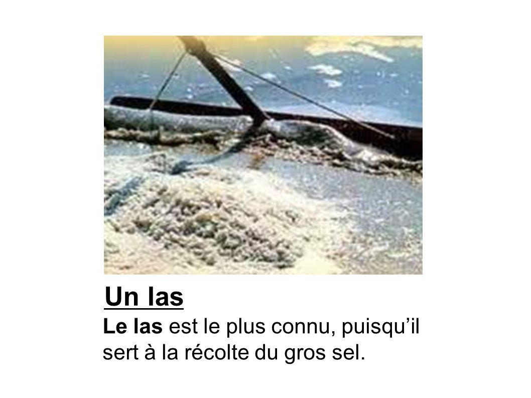 La lousse à la fleur de sel La lousse à fleur de sel sert à cueillir la fleur de sel à la surface des cristallisoirs.