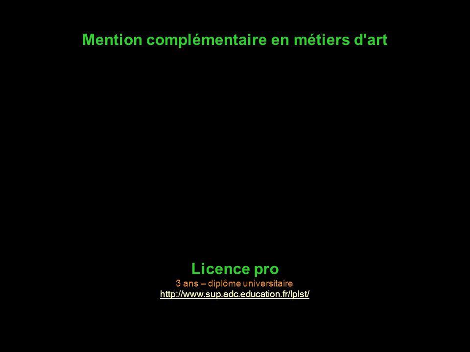 Mention complémentaire en métiers d'art Licence pro 3 ans – diplôme universitaire http://www.sup.adc.education.fr/lplst/