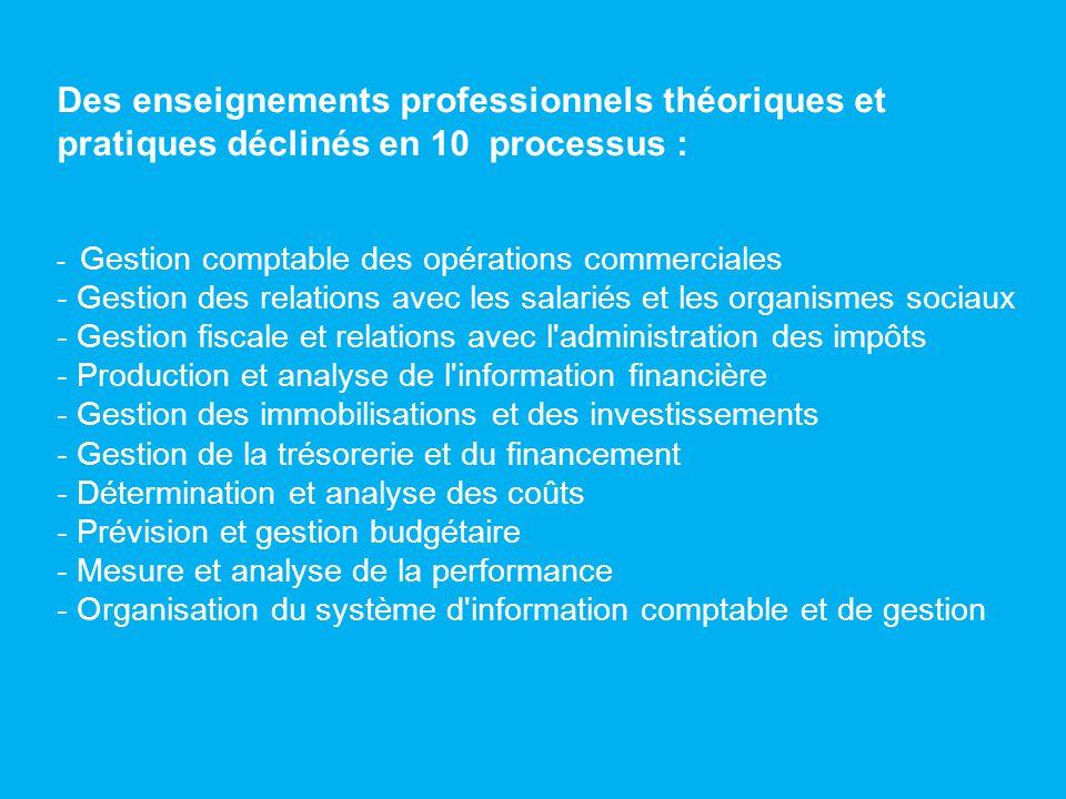 Des enseignements professionnels théoriques et pratiques déclinés en 10 processus : - Gestion comptable des opérations commerciales - Gestion des rela