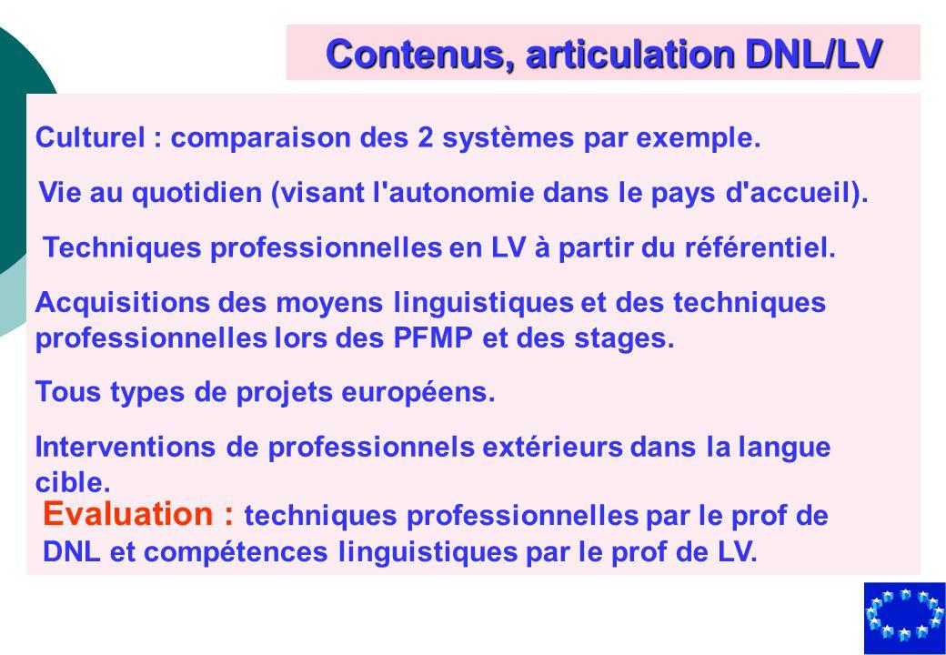 Contenus, articulation DNL/LV Culturel : comparaison des 2 systèmes par exemple. Vie au quotidien (visant l'autonomie dans le pays d'accueil). Techniq