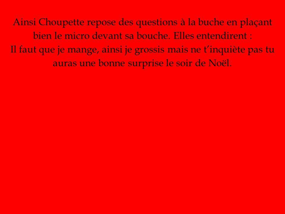 Ainsi Choupette repose des questions à la buche en plaçant bien le micro devant sa bouche.
