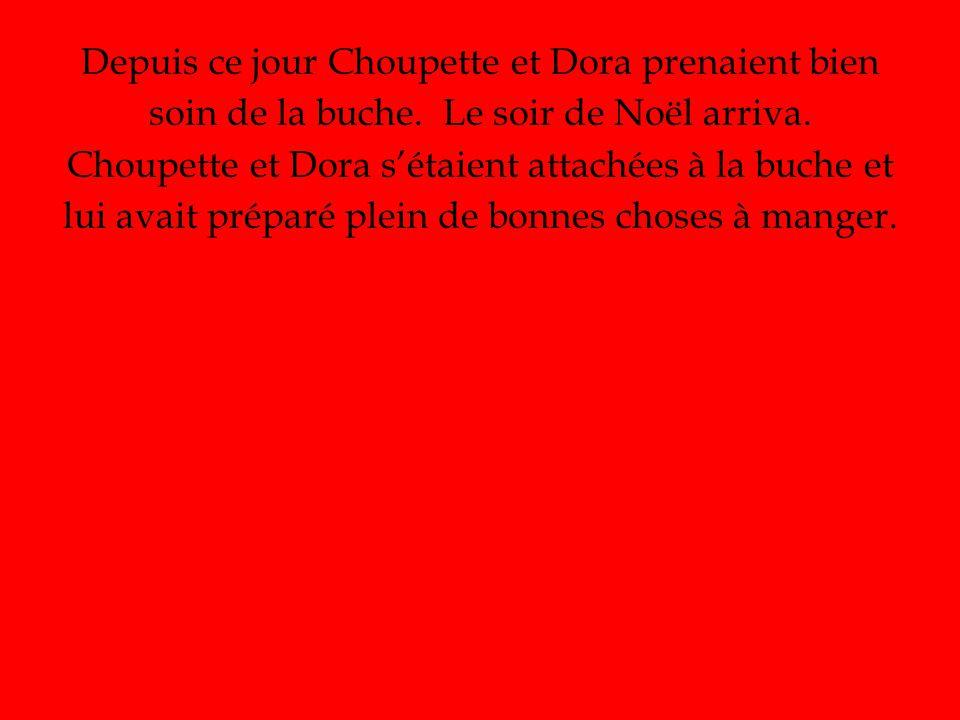 Depuis ce jour Choupette et Dora prenaient bien soin de la buche.