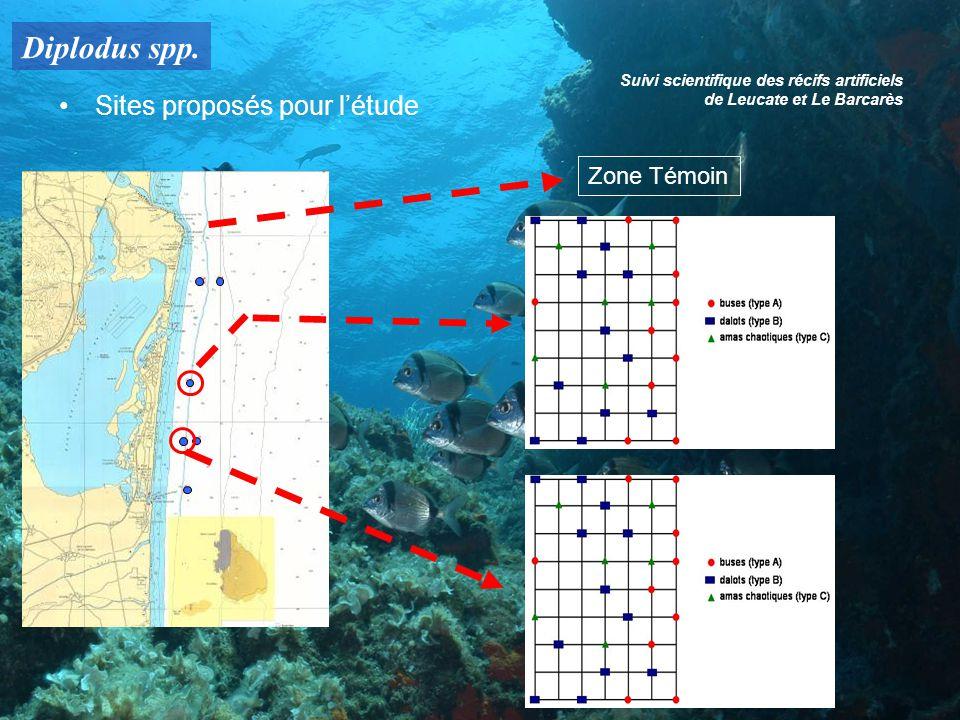 Diplodus spp. Suivi scientifique des récifs artificiels de Leucate et Le Barcarès Sites proposés pour létude Zone Témoin