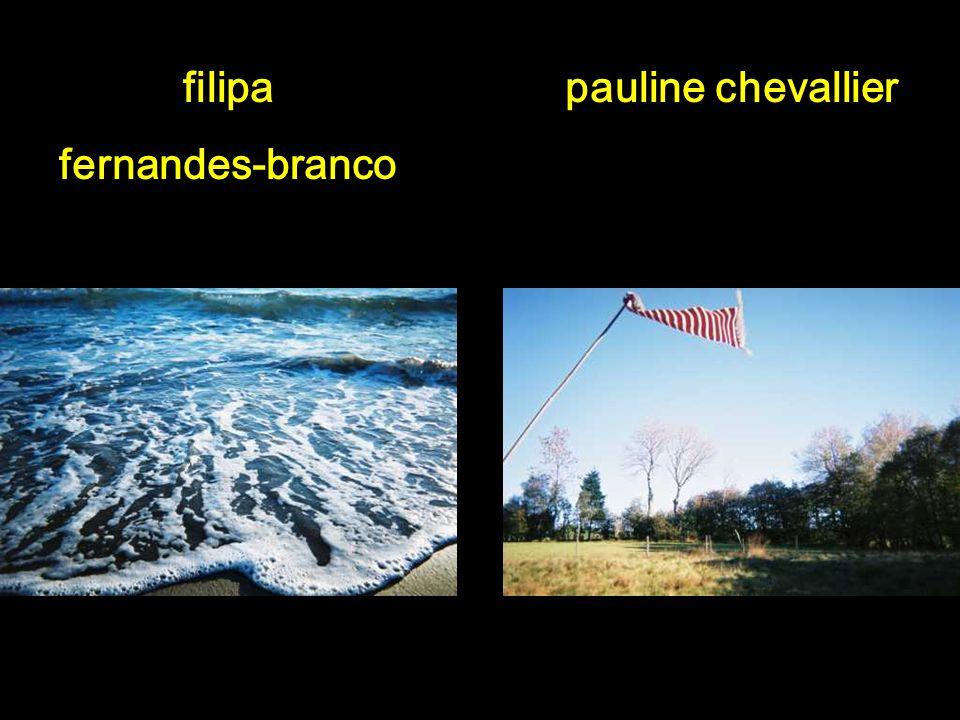 Concours photo du collège Simone de Beauvoir 2006-2007 3 ème prix ex-aequo Lair, leau, le vent
