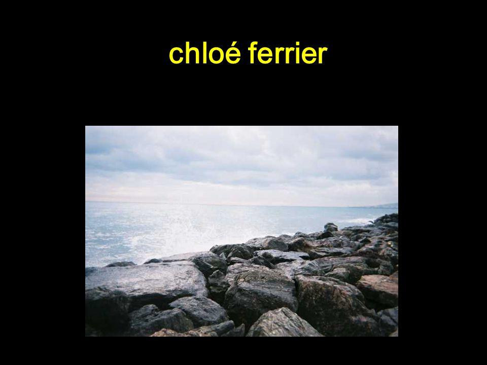 Concours photo du collège Simone de Beauvoir 2006-2007 2 ème prix Lair, leau, le vent