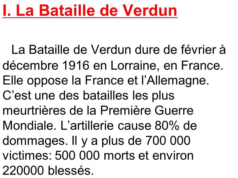 Resultado de imagen de resume bataille verdun